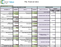 P&L financial ratios